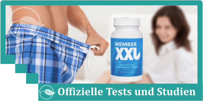 Member XXL Test Studien