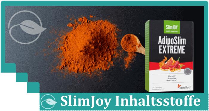 Slimjoy Inhaltsstoffe Wirkstoffe